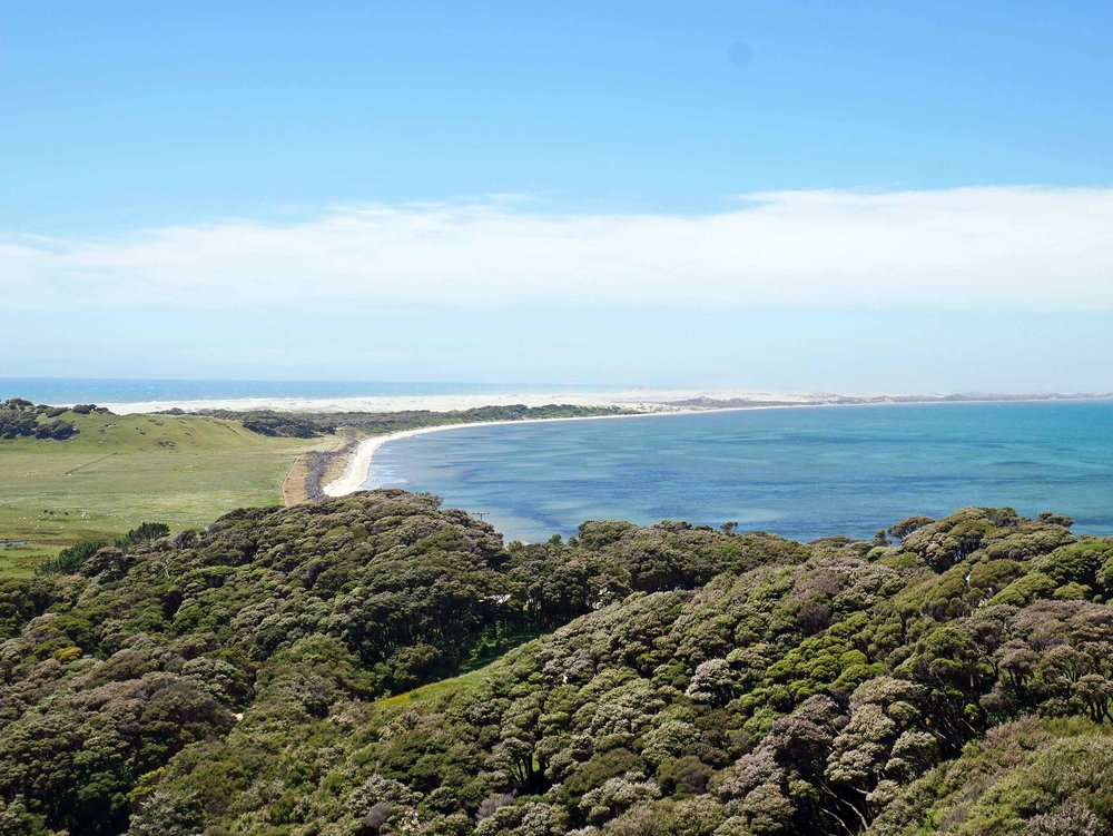More than 300 twists and turns over Takaka Hill, we ended our NZ journey in Golden Bay, framed by the Farewell Spit (Jan 13).