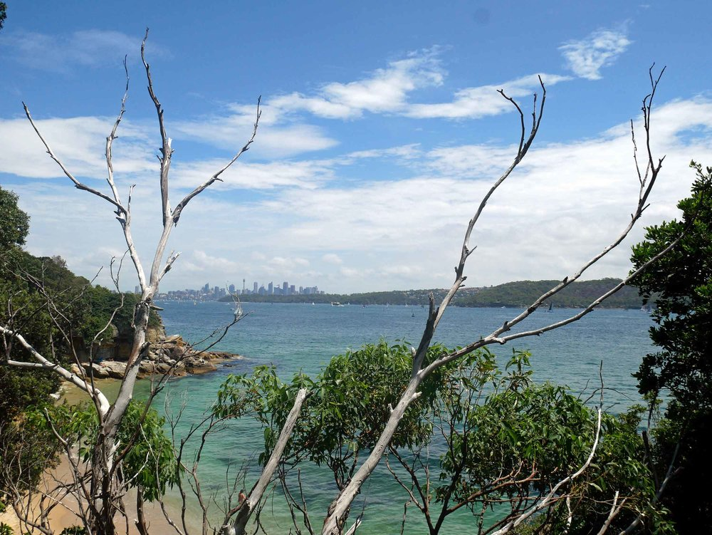 Our ferry took us to nearby Watsons Bay with several beaches and views of the Sydney skyline (Feb 4).