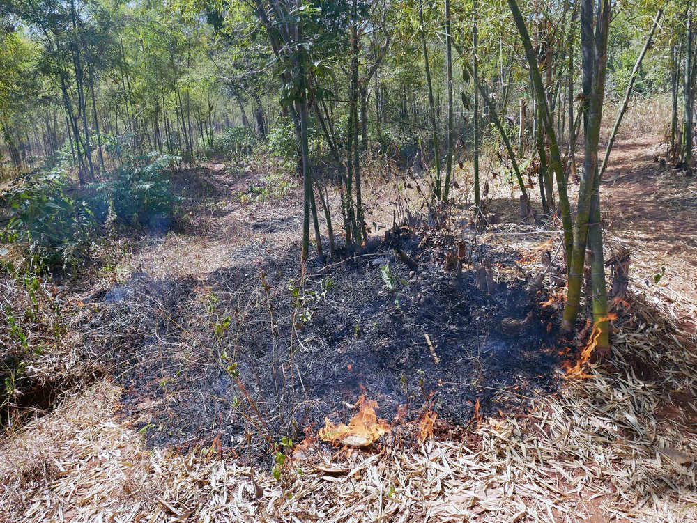 We passed a controlled (and hot!) fire used for agriculture and land management by the Burmese people for centuries (Feb 21).