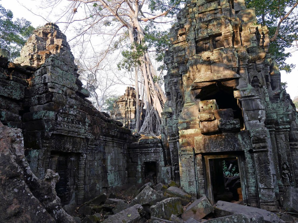 Built in the late 12th century, Ta Prohm (originally called Rajavihara) was a Buddhist monestary and university (Feb 27).