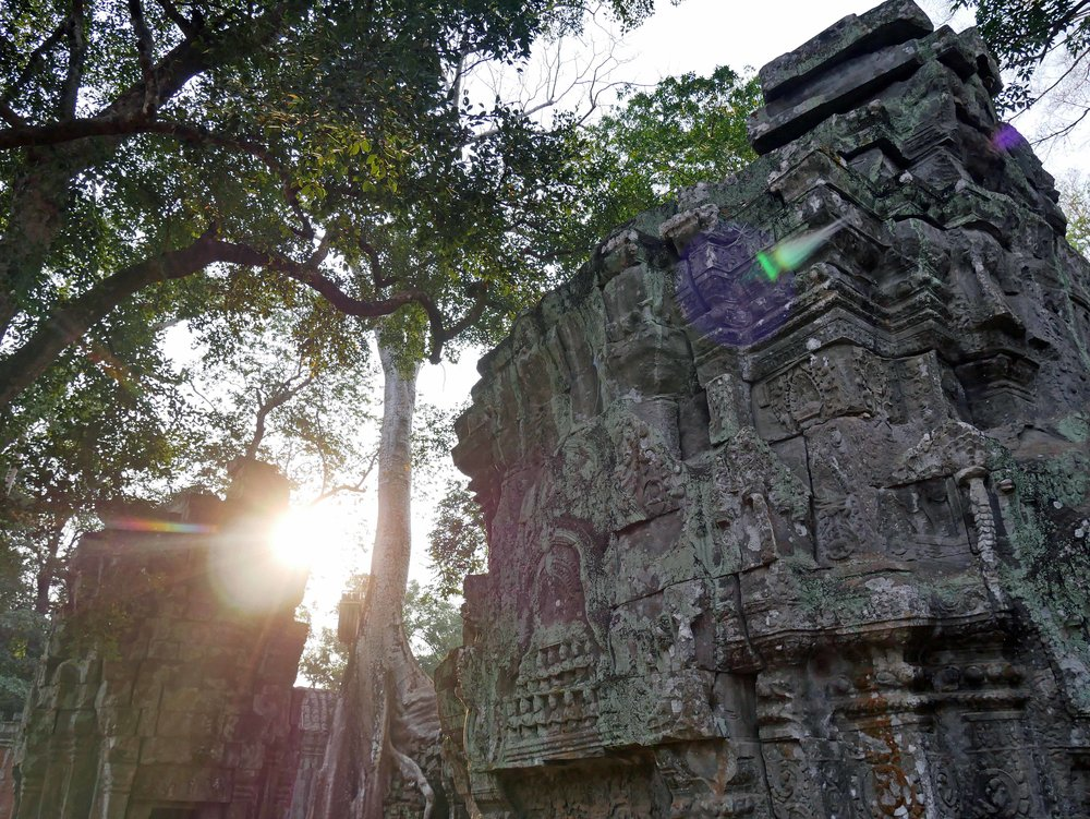 Left in much the same condition as it was found, Ta Prohm feels prehistoric with its jungle surroundings and trees growing out of the ruins (Feb 27).