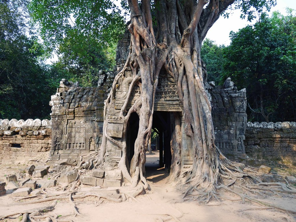 A smaller temple, Ta Som, was built toward the end of the 12th century in honor of the King's father (Feb 27).