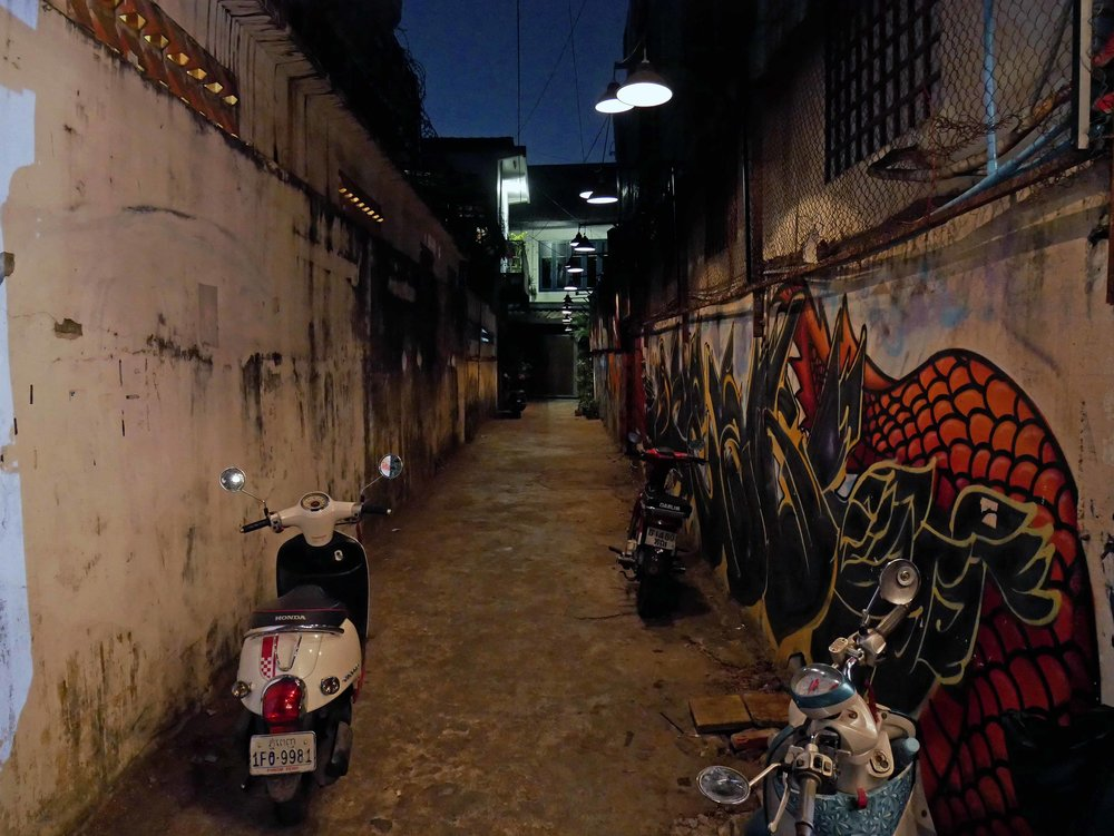 One of the many small alleyways in Phnom Penh, this one leading to a branch of ARTillery Cafe (March 10).