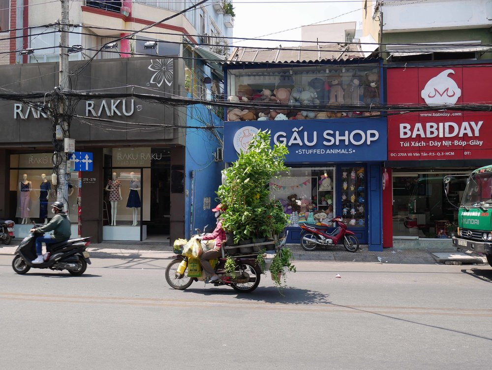 You truly never know what you'll see on the streets of Saigon or on the back of a motorbike zooming through the city.