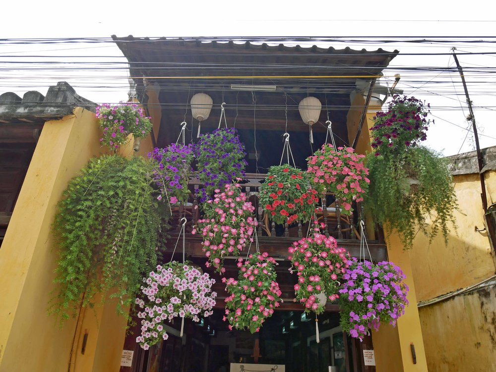The streets and buildings of colorful Hoi An are draped in vibrant flowers and whimsical lanterns (March 16).