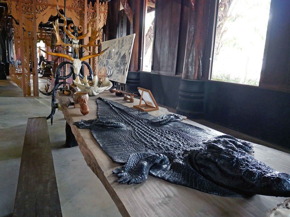 Many unique animal skins, bones and furs are found throughout the Black House.