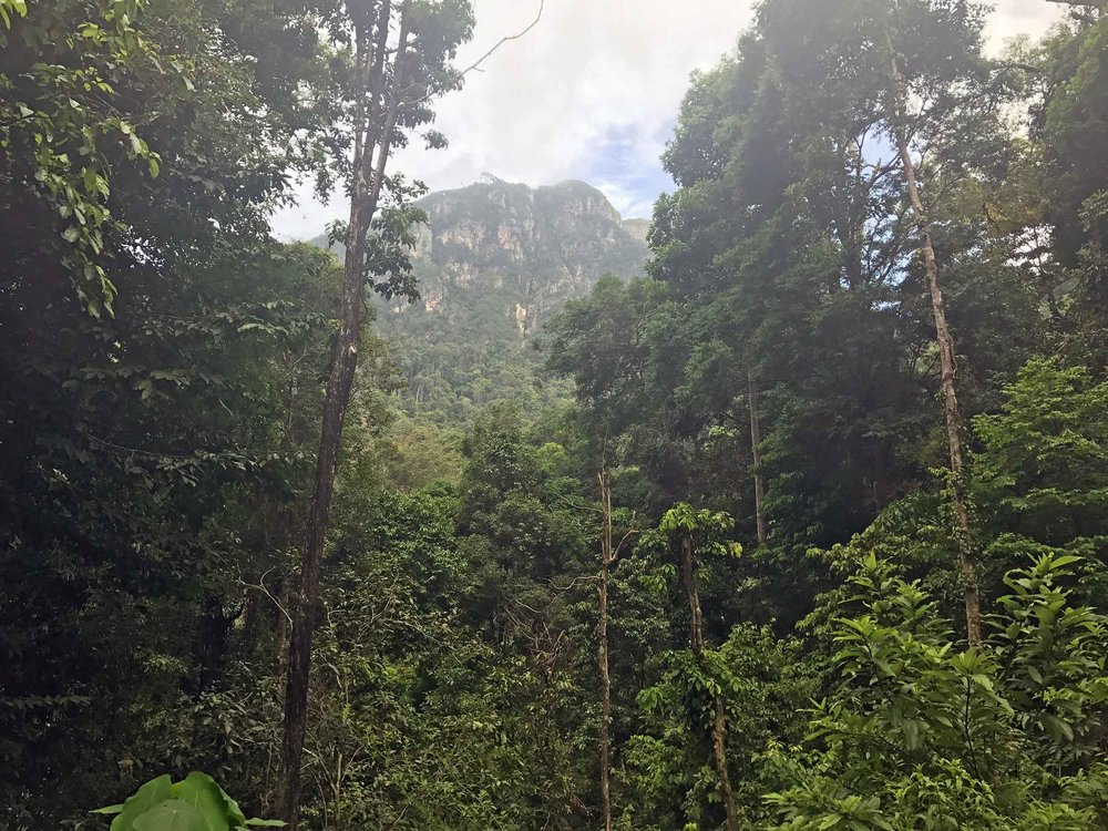 On our hike up the falls, we took in a view of Langkawi's Manchincang mountain, which has cable cars that tourists can take to the top.