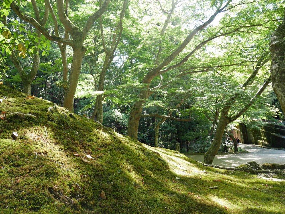 The sumptuous, mossy grounds of Nanzen-ji