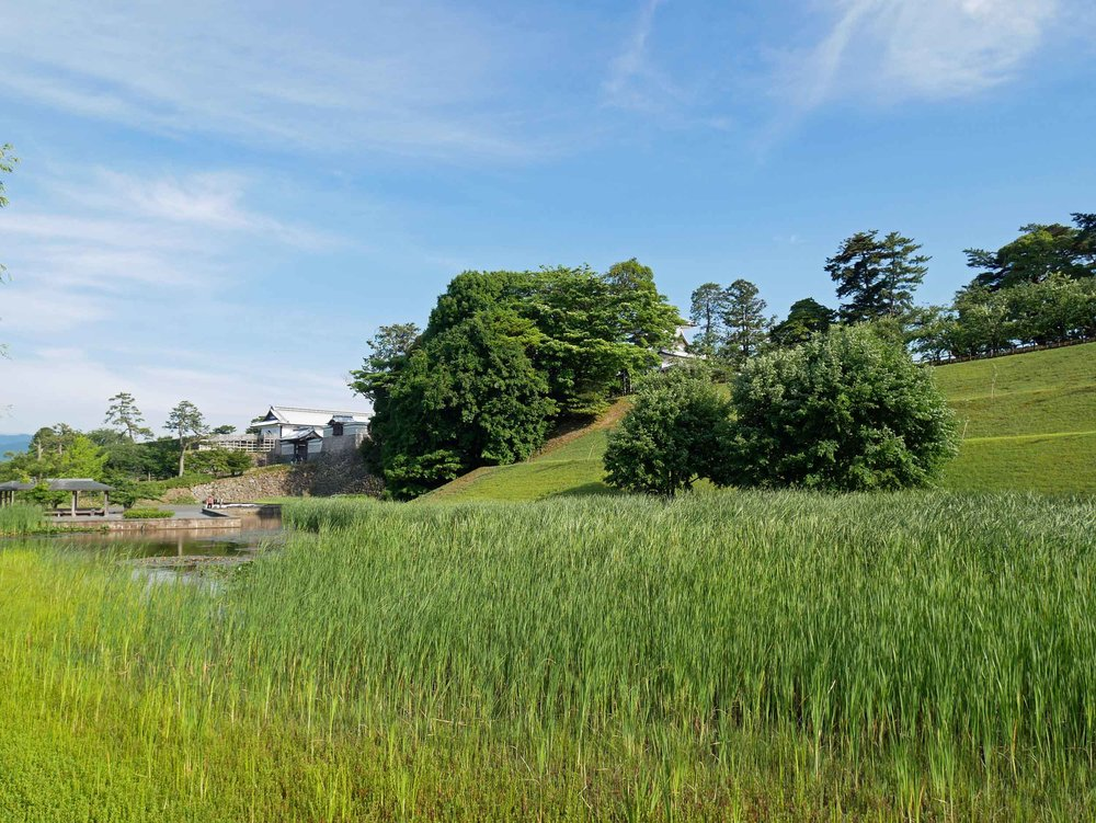 Kanazawa Castle Gardens' verdant fields.
