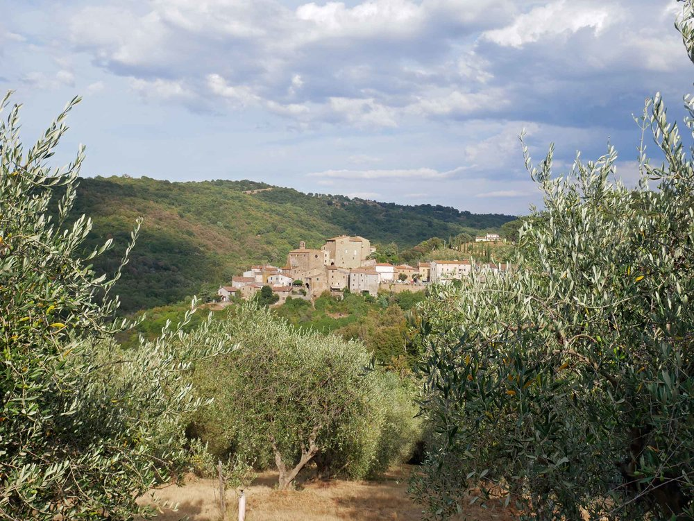 We couldn't believe our luck, arriving to our oasis among the olives--a quaint cottage with a killer view (July 15).