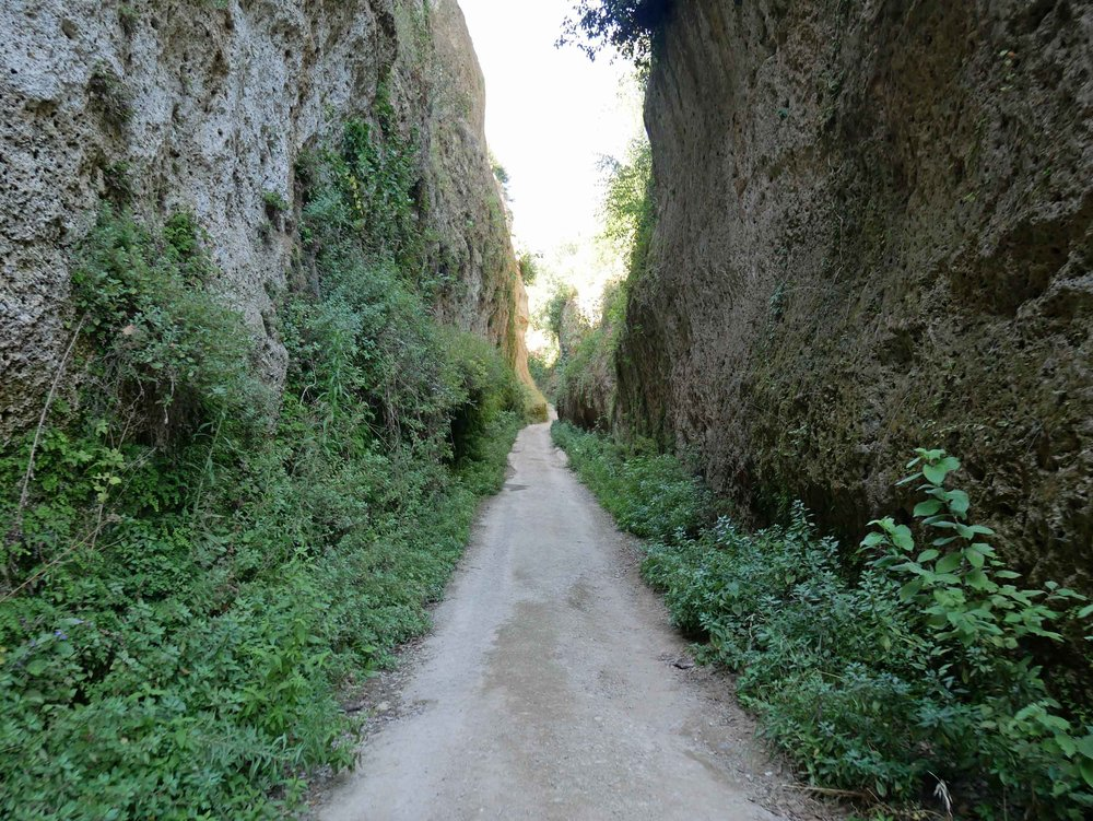 Other days, we took short trips around the area. For example, Vie Cave, which are ancient trails cut through the Etruscan hills (July 18).