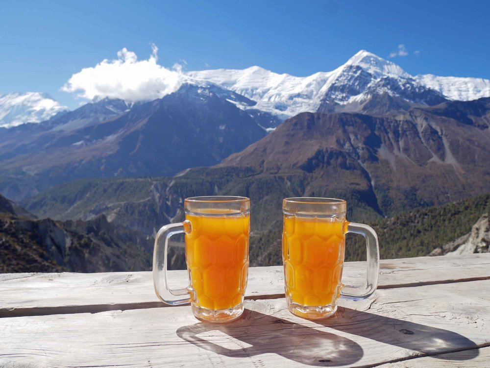 Seabuckthorn juice  (the berries of which are harvested in the mountains here) contains about 15 times the amount of Vitamin C of an orange as well as dense amounts of carotenoids, Vitamin E, amino acids, and dietary minerals – a natural energy drink!
