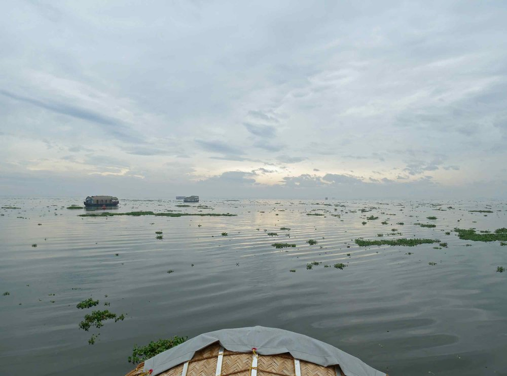 The view from our backwaters river boat cruise in Kerala (Nov 30).
