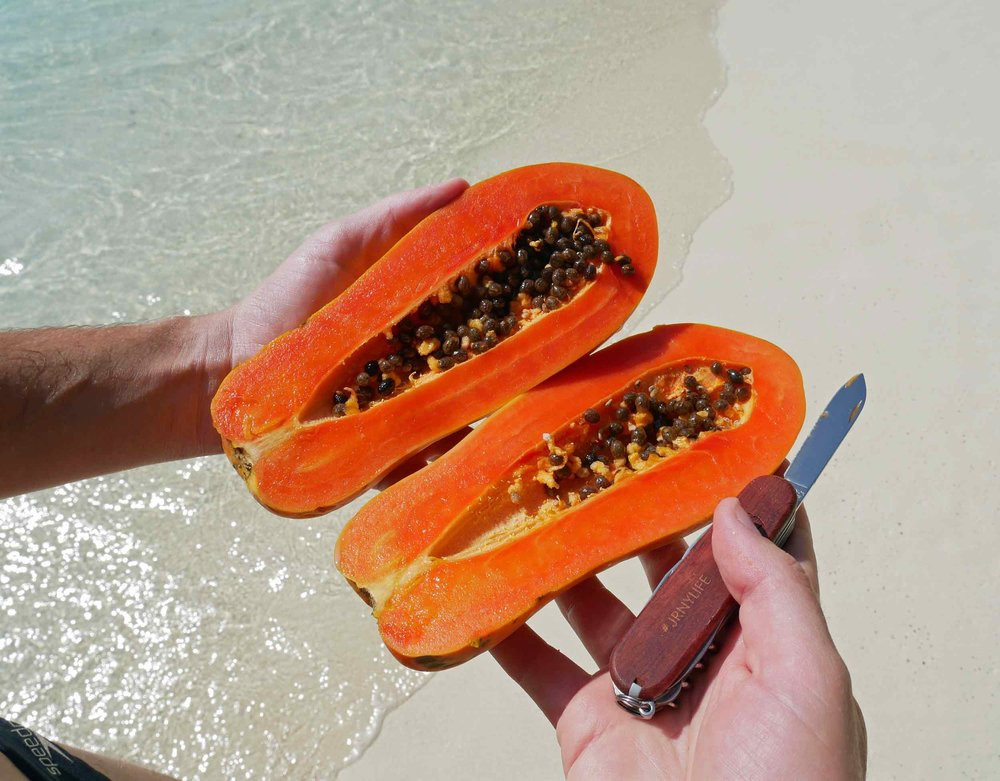 Snack time on the beach means locally grown papaya – served with the help of our trusty Swiss Army Knife (thanks Leah!).