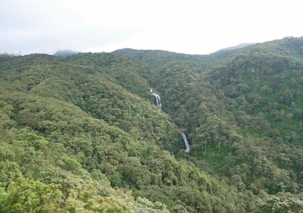 Waterfalls flowed a-plenty in this lush, verdant land.