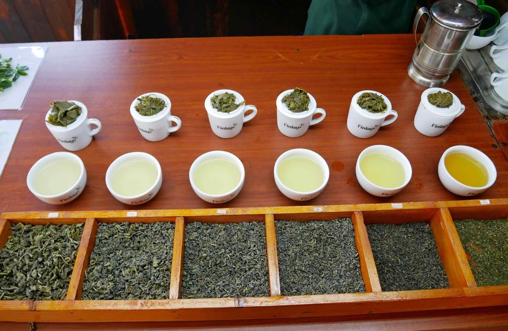Heaven! Green tea in every shade! While in Ella we visited two tea factories (no photos allowed!) – black tea at Uva Halpewatte and this Green tea factory at Newburgh.