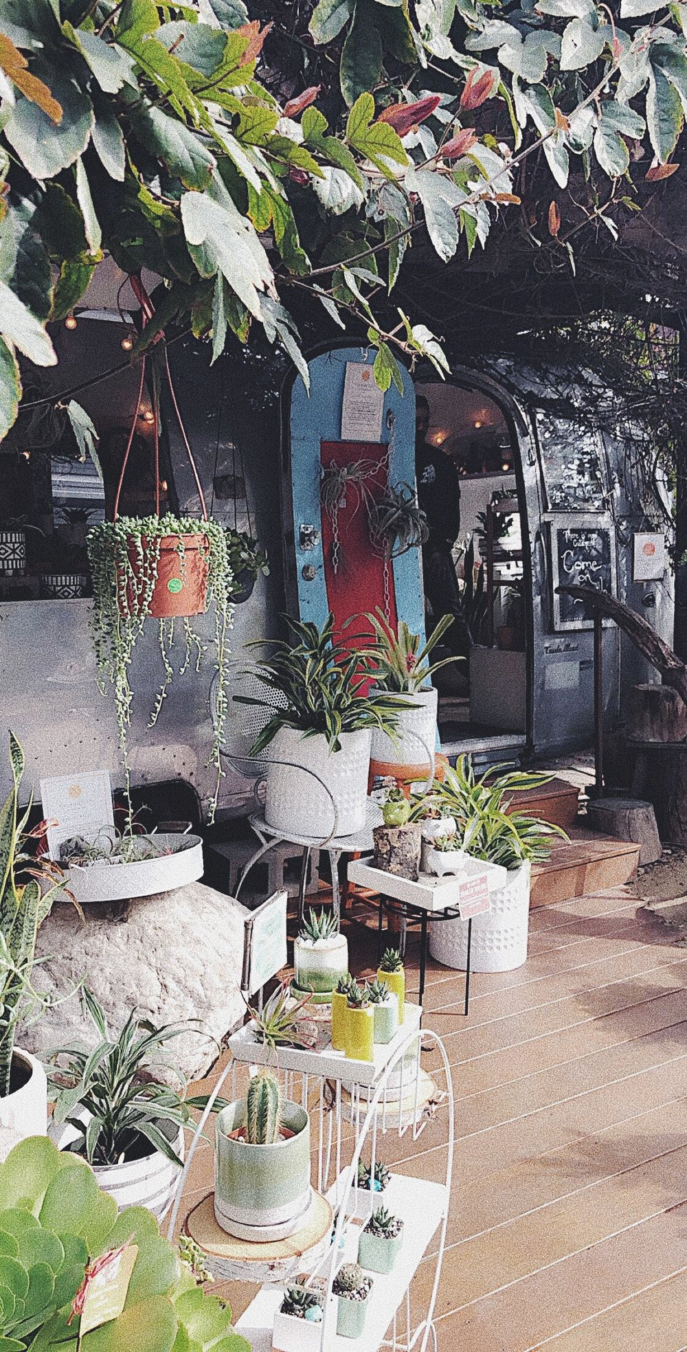 "Eco-Friendly Shops - ""The Camp"" Costa Mesa"