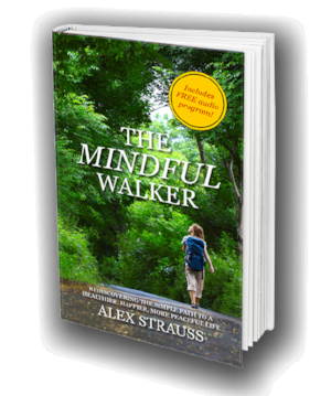 The Mindful Walker By Alex Strauss