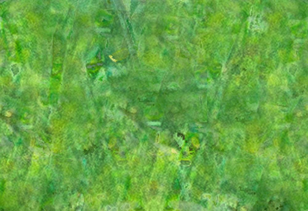 blurred background-6.jpg