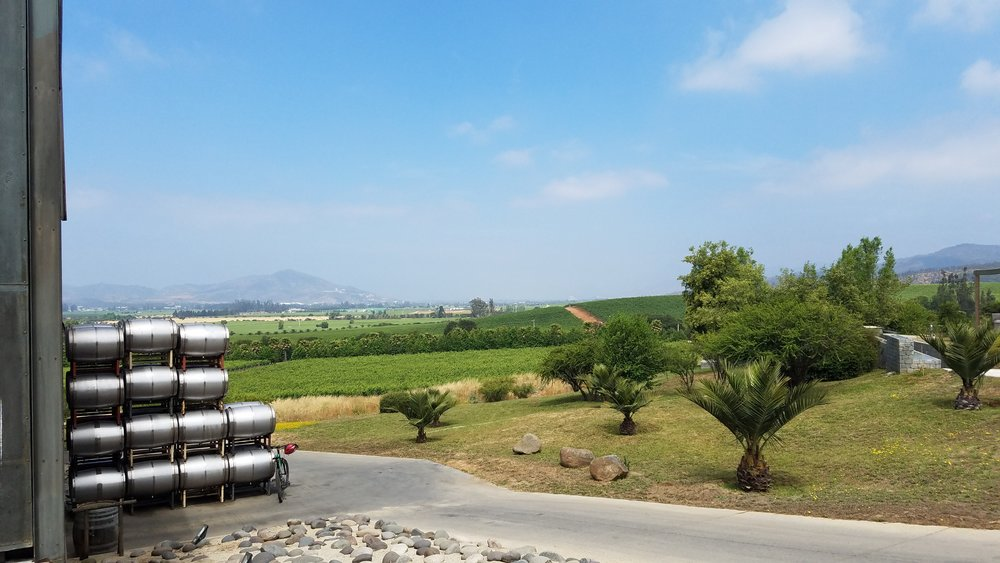 View from Kingston Family Vineyards