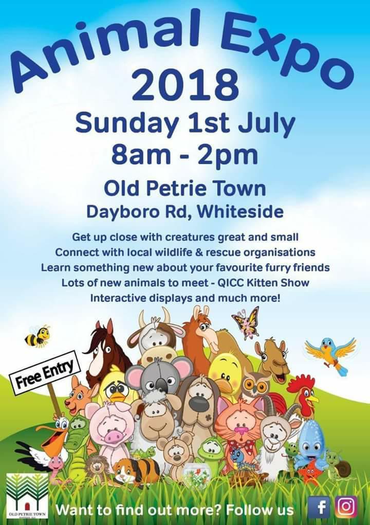 Animal_Expo_2018_Old_Petrie_Town_Sundy_1st_July.jpg