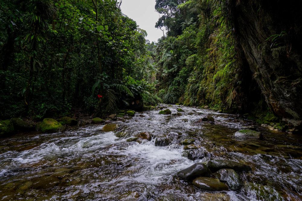 Río con marca del sendero