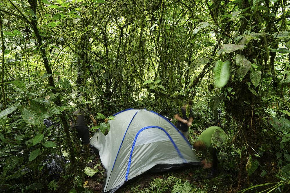 Montando el campamento