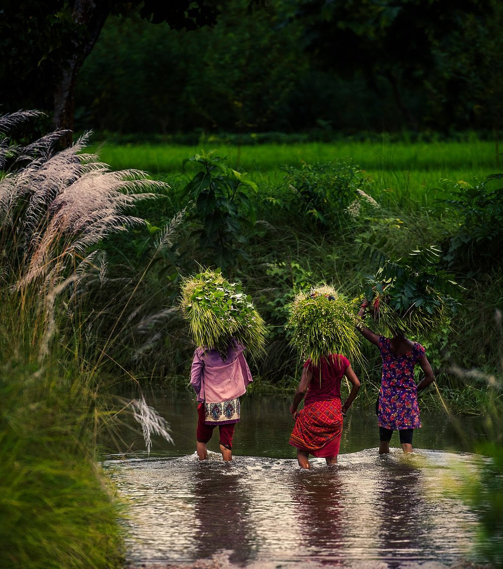 Simon+Needham+Humanitarian+Photography+Nepal+7.jpg