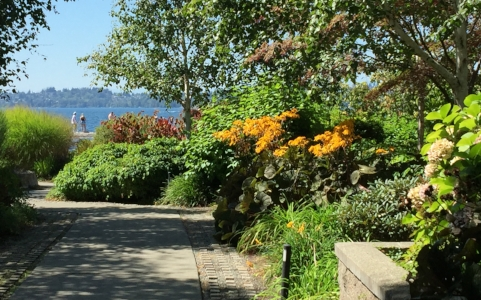 Street-end mini-park on Kirkland's Lake Washington waterfront.  Seattle in background.