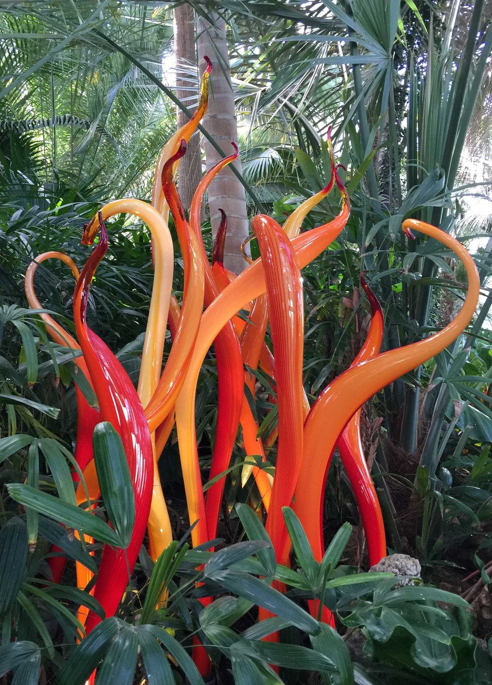 phipps-red-orange-tall.jpg