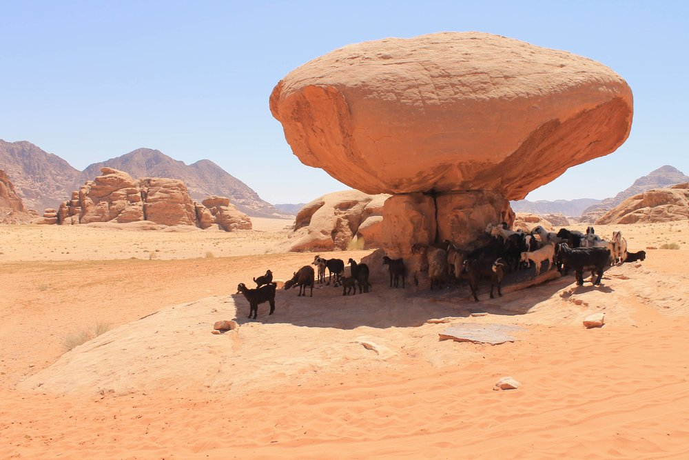 Unique-stone-shed-at-wadi-rum.jpg