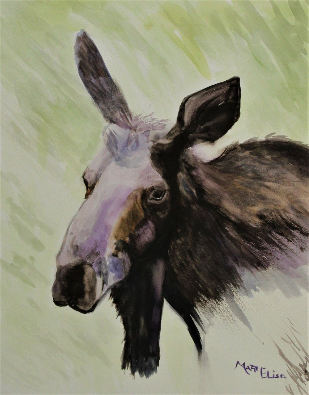 Purple Moose   - Marie Marinovich