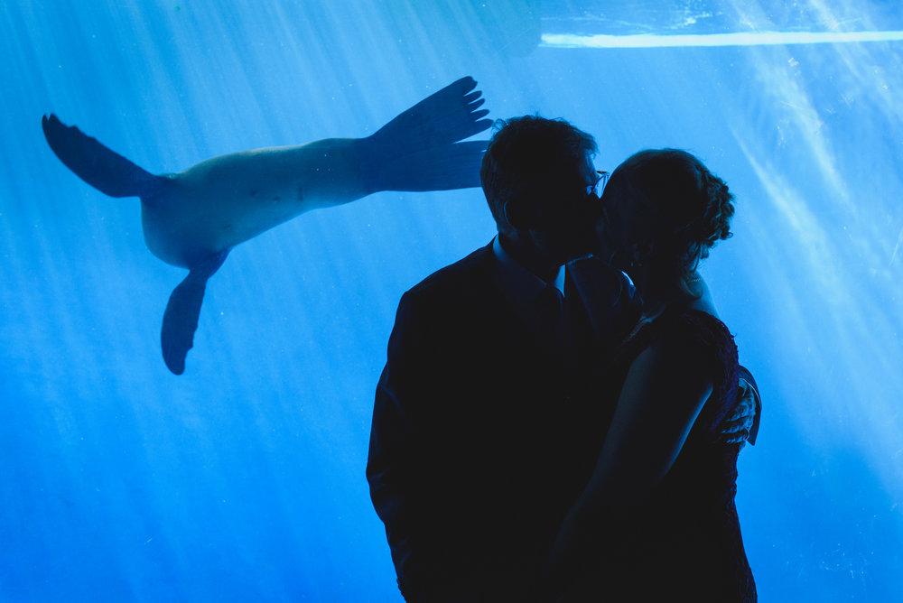 Zoo Wedding-252.jpg