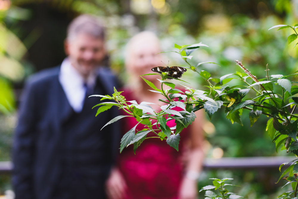 Zoo Wedding-279.jpg