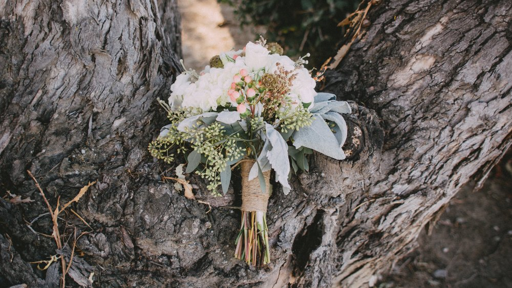 Jules and Louis Blog - Shop the Boutique - flowers on tree