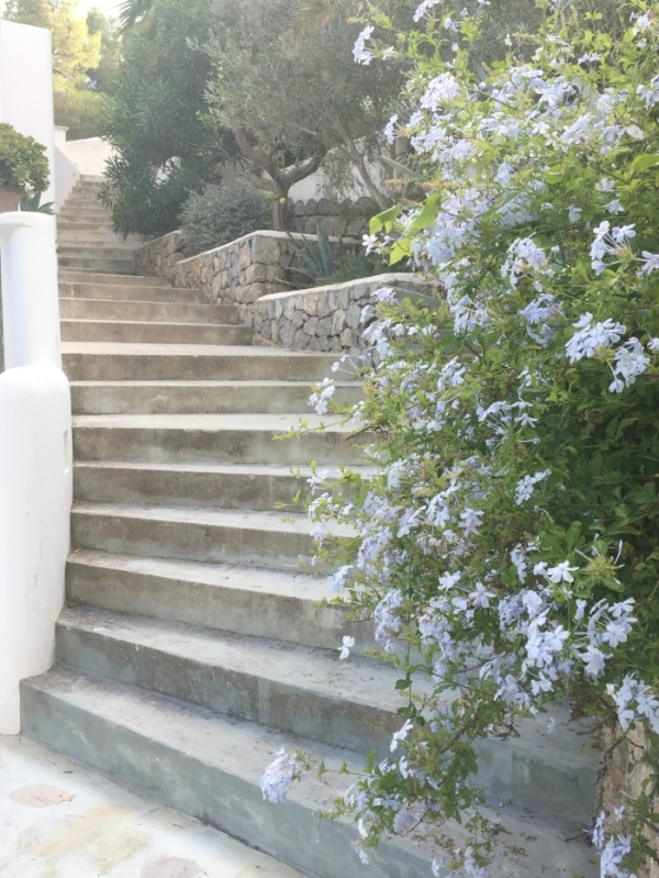 Jules-and-Louis-Blog-Casa-Supernova-stairs-with-flowers.jpg
