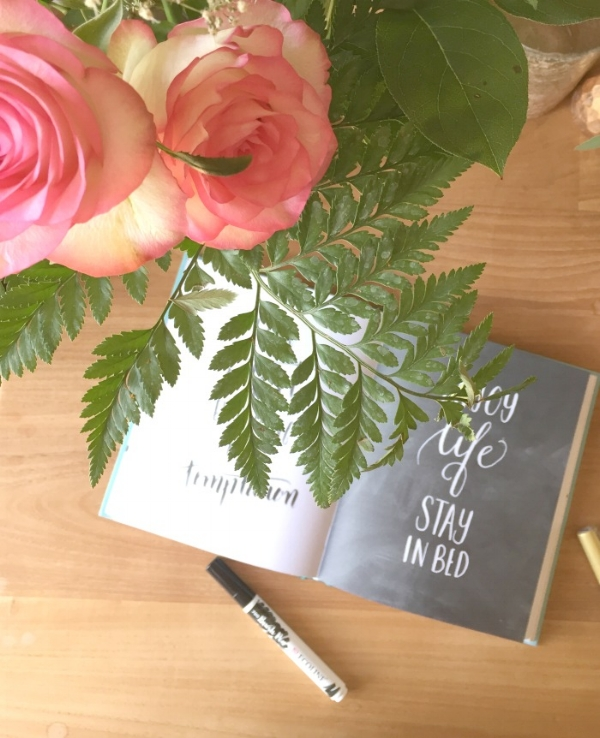 jules-and-louis-blog-letters-book-review-book-and-roses