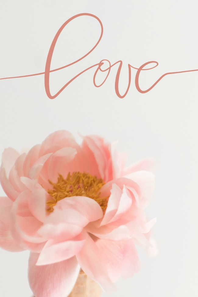 jules-and-louis-blog-happy-love-day-rose-blush-lettering.jpg