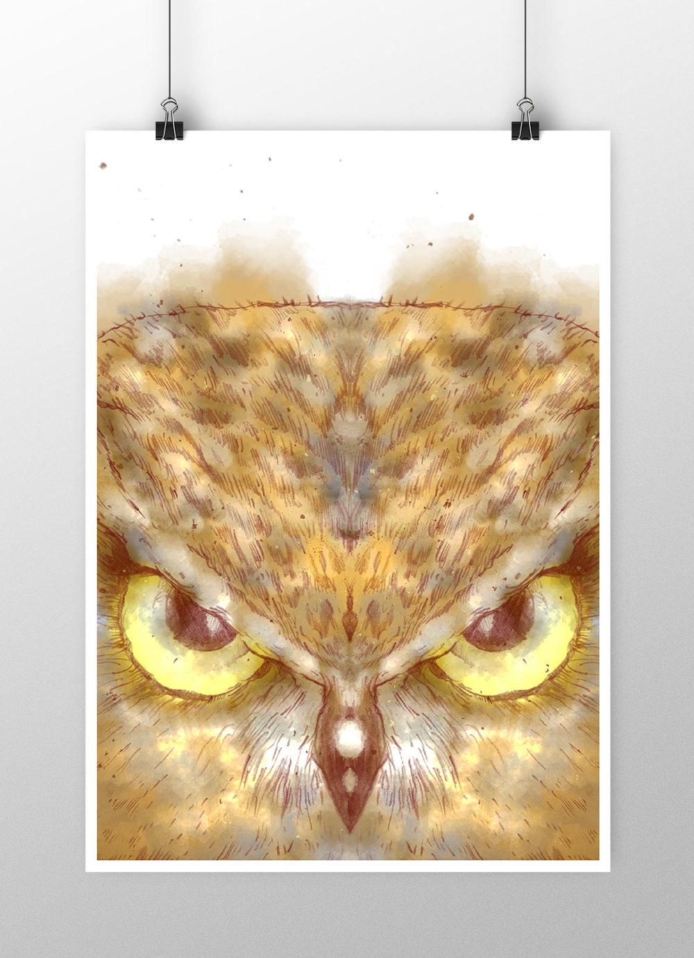 EAGLE EYES |A3 PRINT    MATT FINISH ON 330G PAPER    SIGNED BY ARTIST    LTD RUN