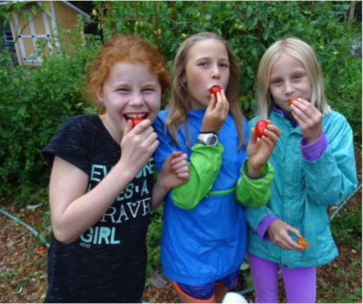 Emily, Amelie, and Anika enjoyed fresh tomatoes from Copper Cannon's garden while we were there last week.