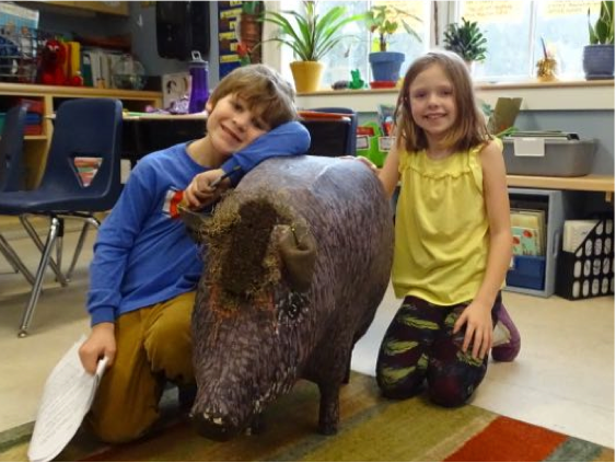 Charlie and Sofi shared a little love with the peccary in their classroom as part of the rainforest unit. This year's class will be making a scale model of a harpy eagle.