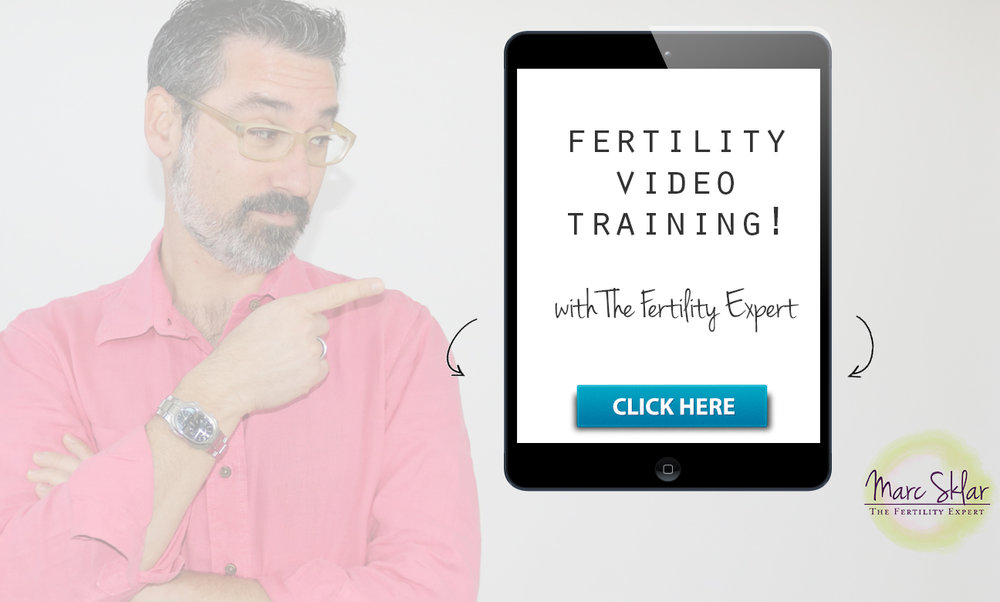 fertility-video-series-promo-II.jpg