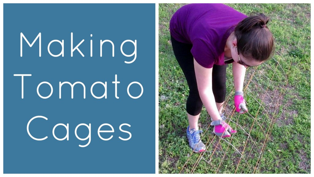 Making Tomato Cages