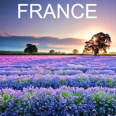 France V23 - SquareSpace.jpg