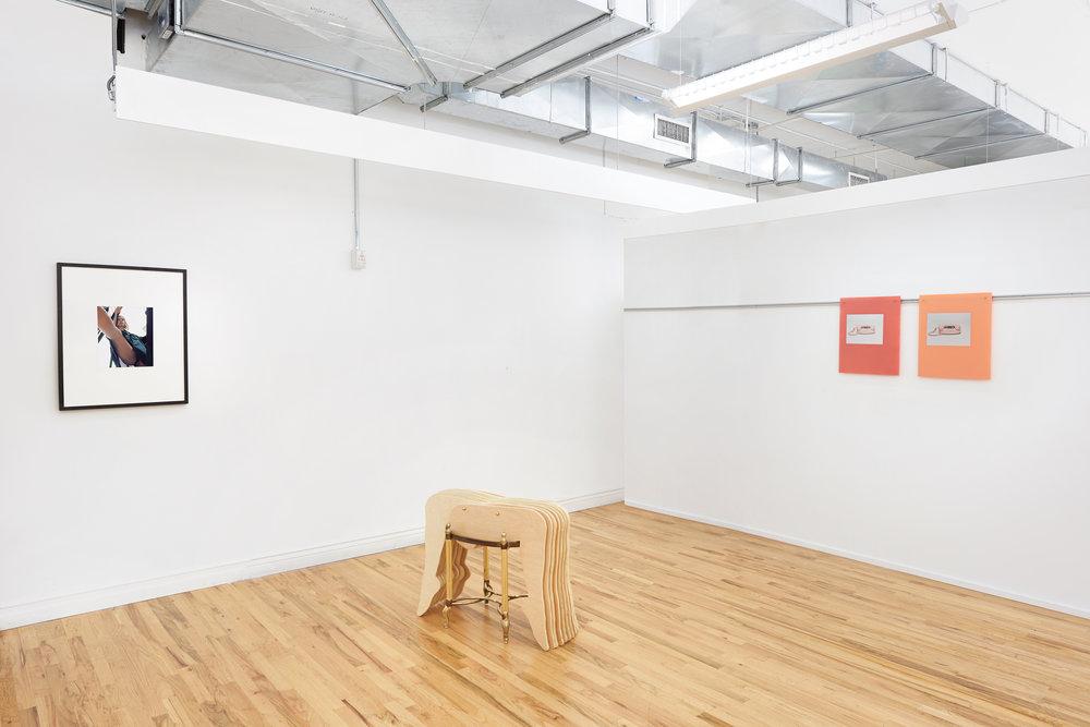 'for views',  installation with Phoebe d'Heurle, Johanna Jaeger, & Sara Murphy, New York, 2017