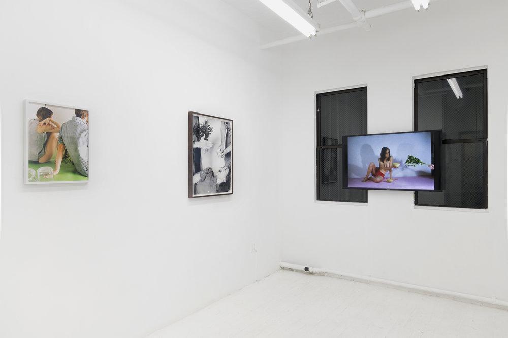Installation view, Lubov, 2018