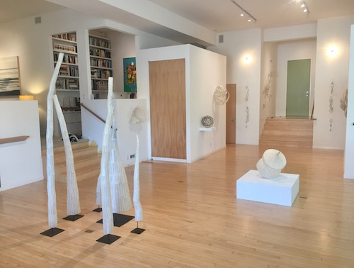 Nancy Mintz, Field Notes (installation view: Processional 1-6 at left), all works 2017
