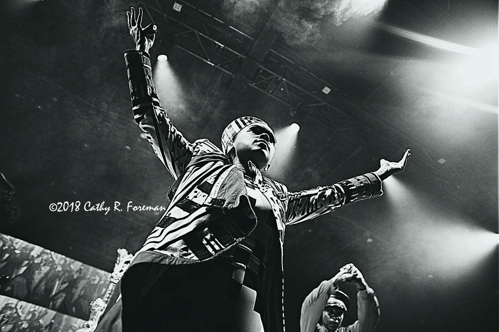 (c) 2018 Janelle Monae by Cathy R. Foreman