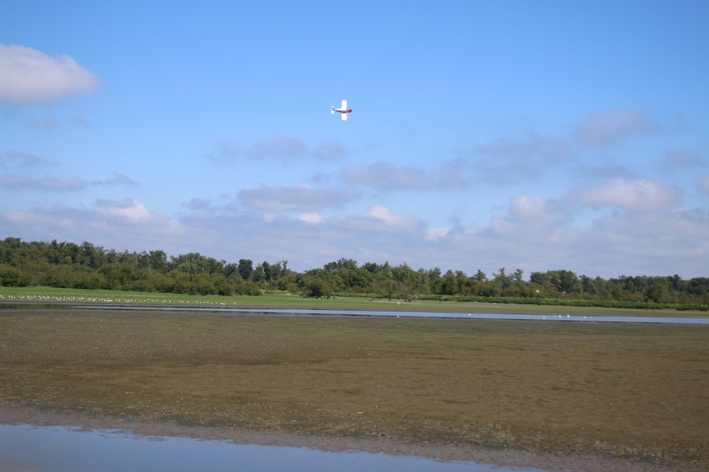 plane at woodyard.jpg