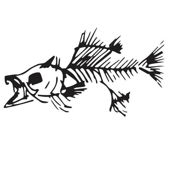 fishy copy.jpg